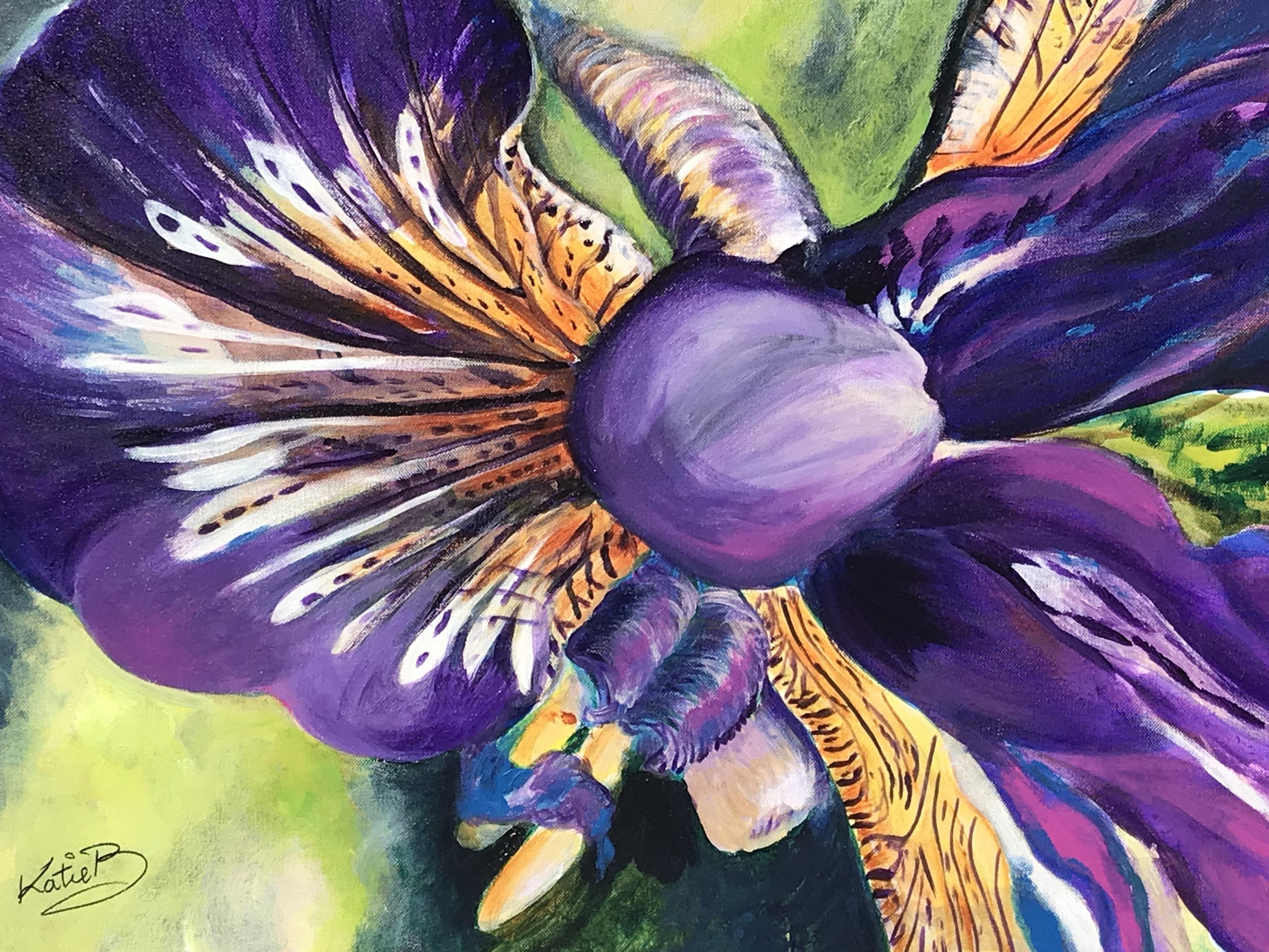 Iris 108KB