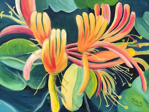 112 Honeysuckle by Kate Brown
