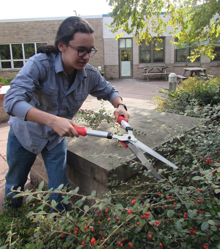KEY Club cleans courtyard