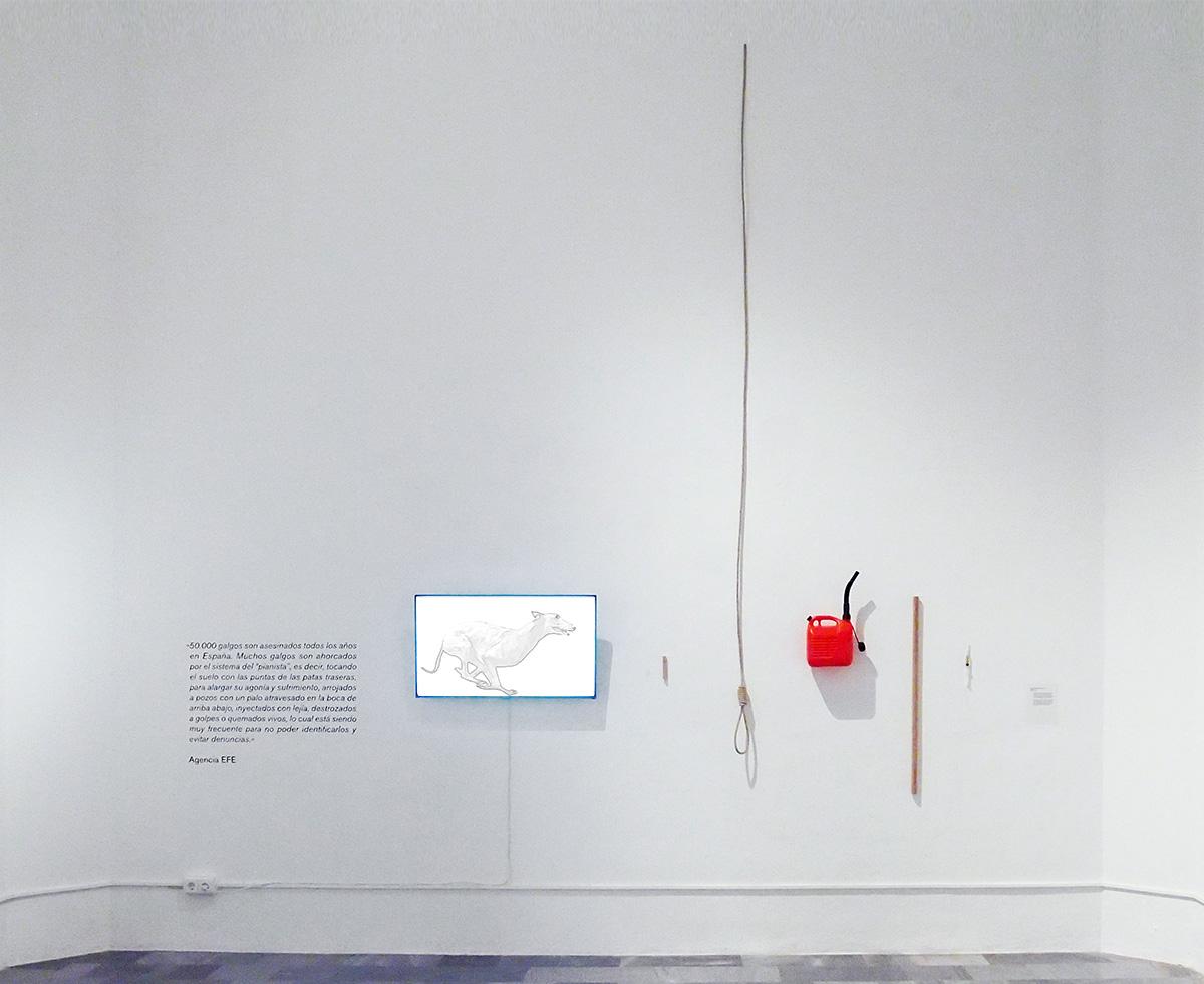 El Galgo | exposición