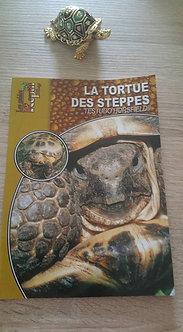 La Tortue des Steppes