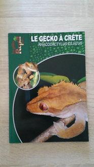 Le Gecko à crète