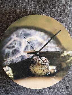 Horloge murale tortue