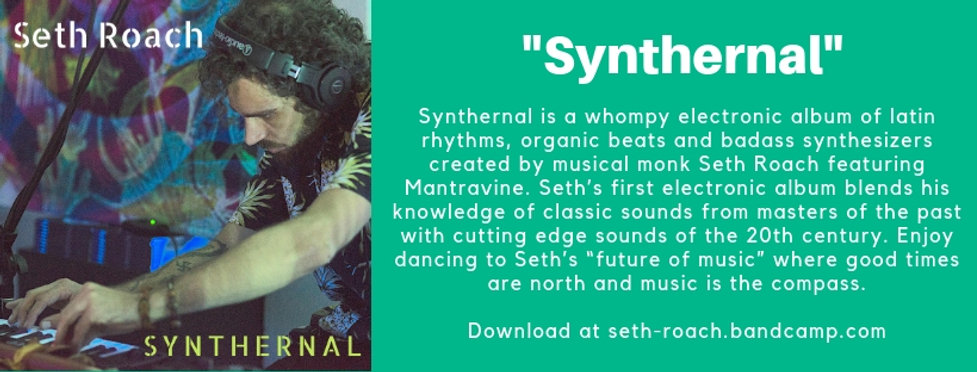 Synthernal Fbook cover.jpg