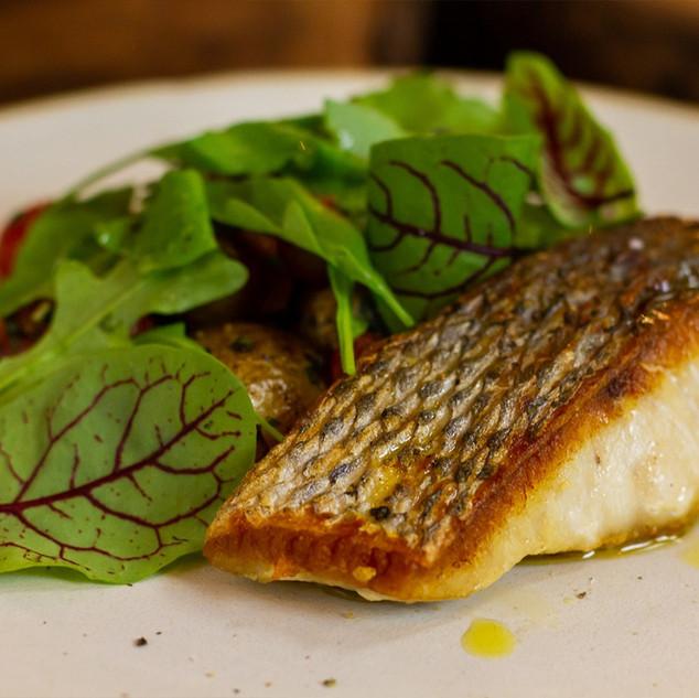 Filé pescado premium