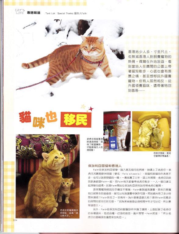 201811 Cat_s Life 老虎仔訪問-4.jpg