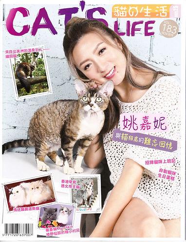 201811 Cat_s Life 老虎仔訪問-1.jpg