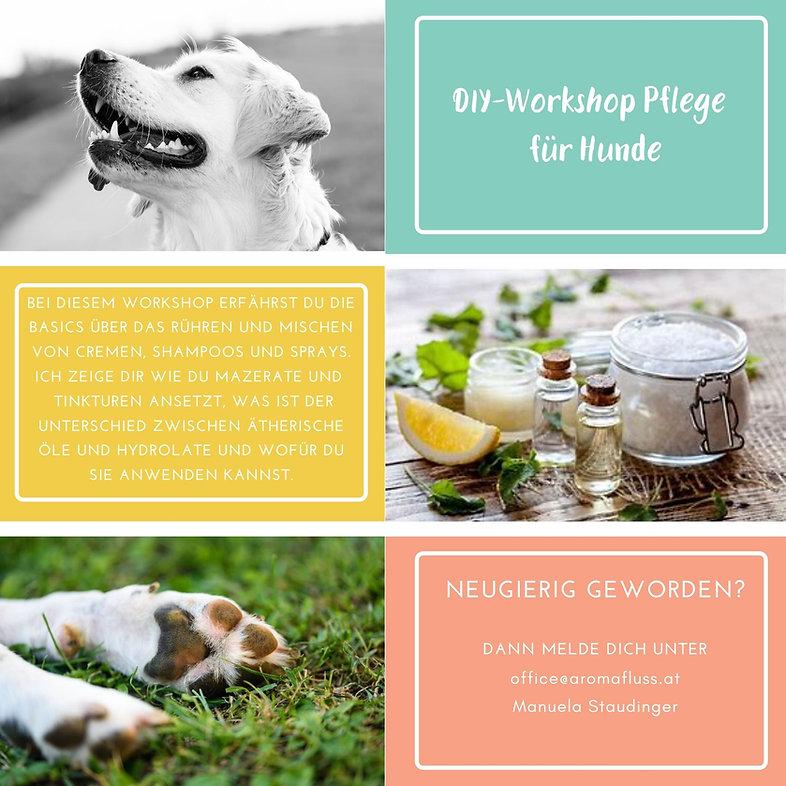 DIY Pflege Hund Aromafluss.jpg