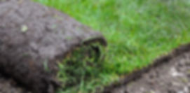 turf artificial turf