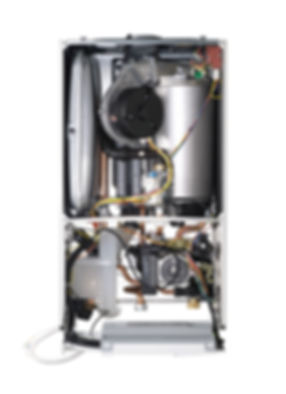 C21A3D33-047F-4CE6-899F-B50D8090E2C6.jpe