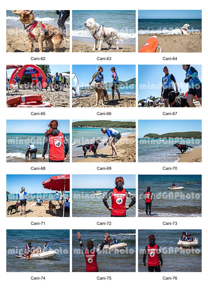 Outdoor Sport Festival-18.jpg