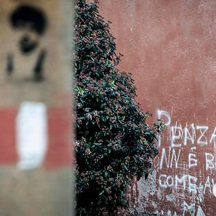 Roma-17.jpeg