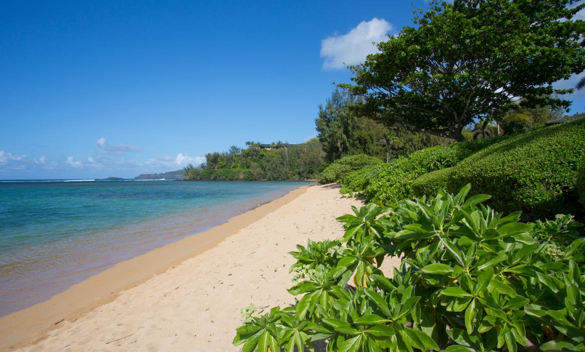 kauai-214-25.png