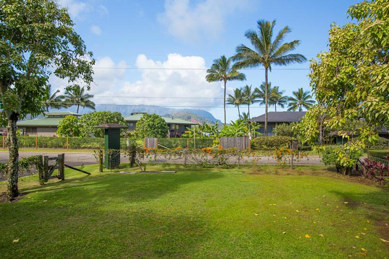 Kauai 218 - 10
