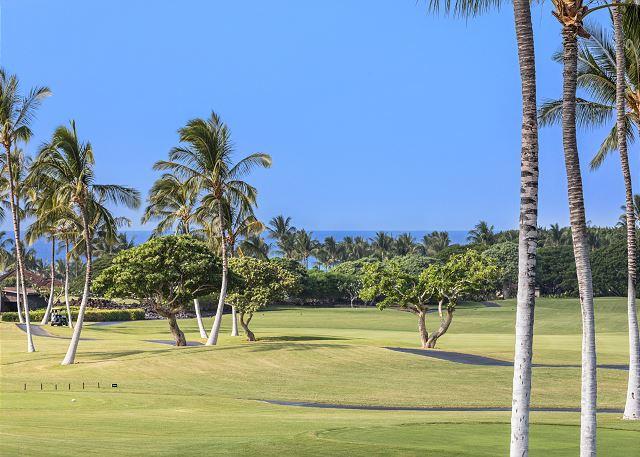 Hawaii 415 - 6