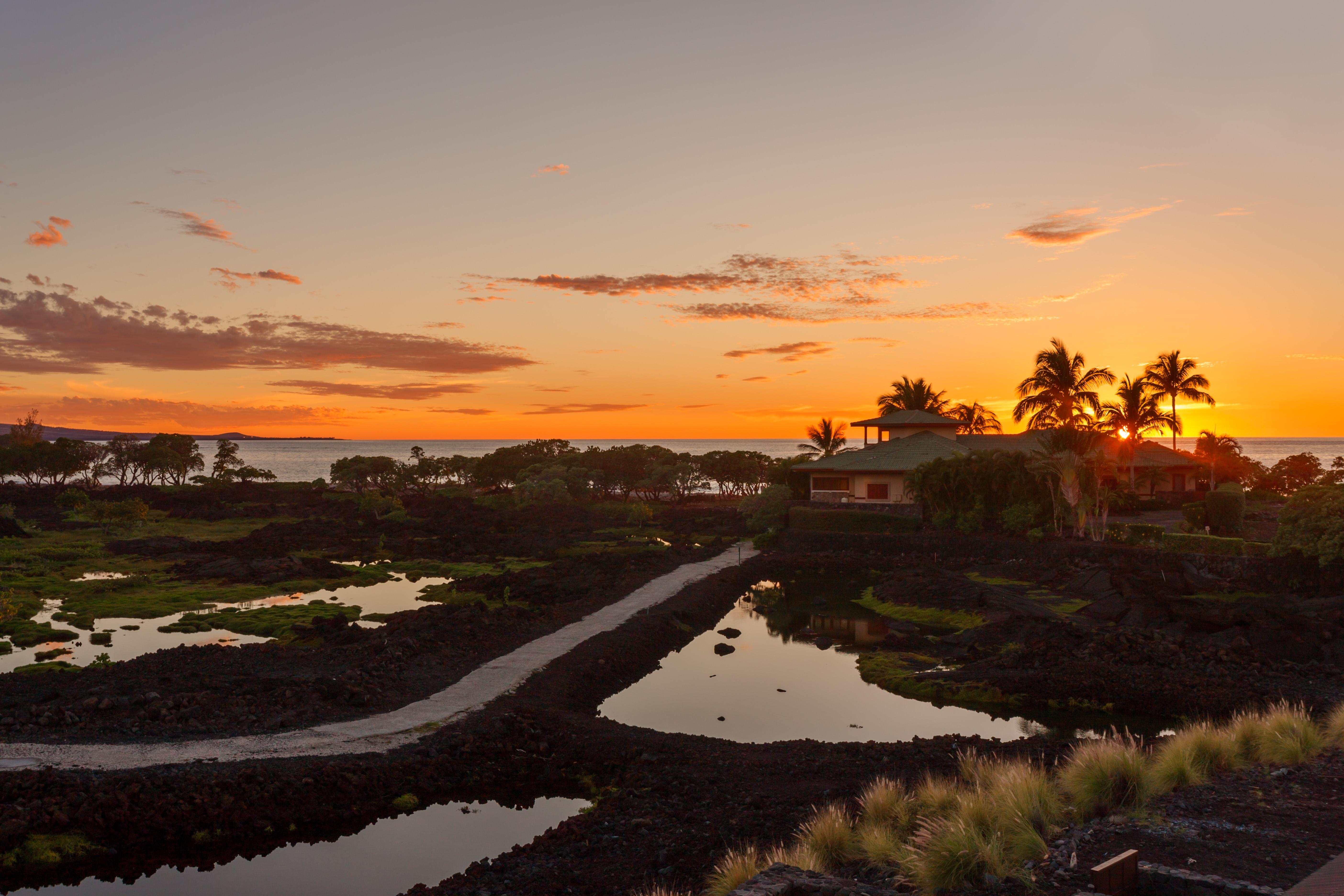 Hawaii 409 - 12