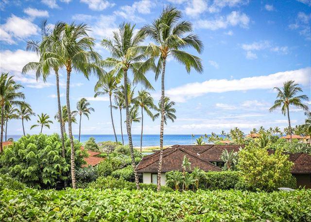 hawaii-466-3101-26.jpg