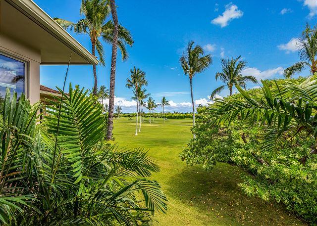 Hawaii 415 - 5