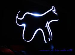 Unicorno bianco nella notte