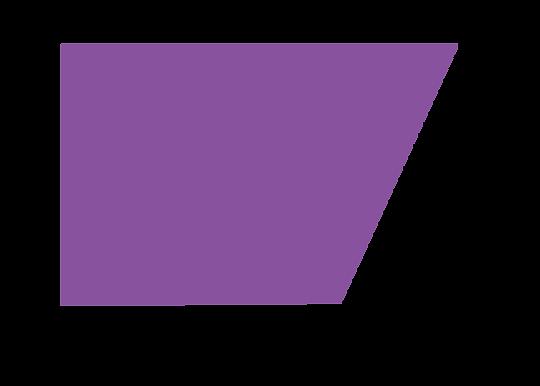 Purple Shape.png