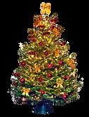 Versierde-Kerstboom-600x785.png