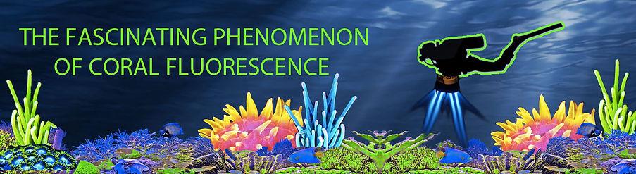 phenomenon of coral fluorescence