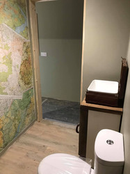 travel theme shower room