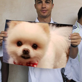 Cristiano Ronaldo wants the Mayor to come to Portugal