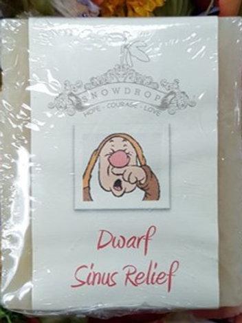 Dwarf Sinus Relief