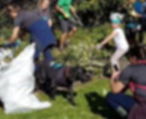 Broadfield Park Clean Up crop.jpg