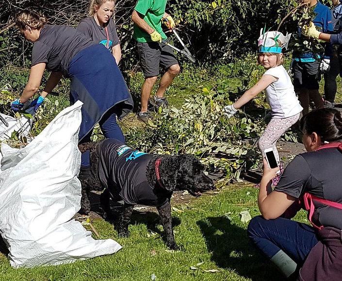 Broadfield Park Clean Up crop.jpg