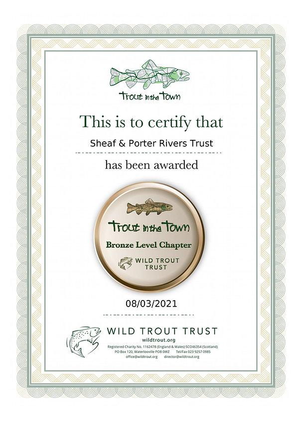 SheafAndPorter_TinTT Bronze Certificate