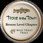 SheafAndPorter TinTT Bronze badge.png