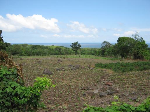 Land for sale Isla Omotepe, Nicaragua
