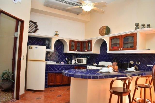condo-kitchen