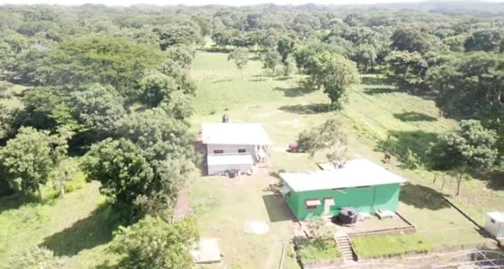 diria farm two
