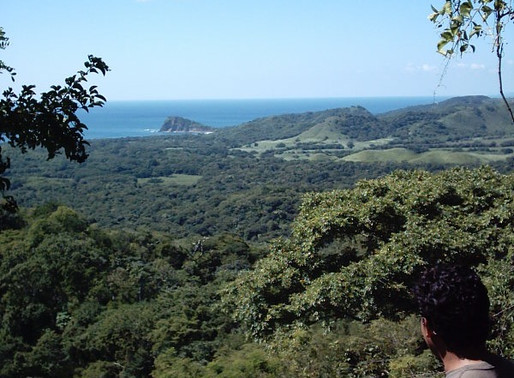 For sale 87 manzanas or 151 acres in Ostenial at US$8000 per manzana