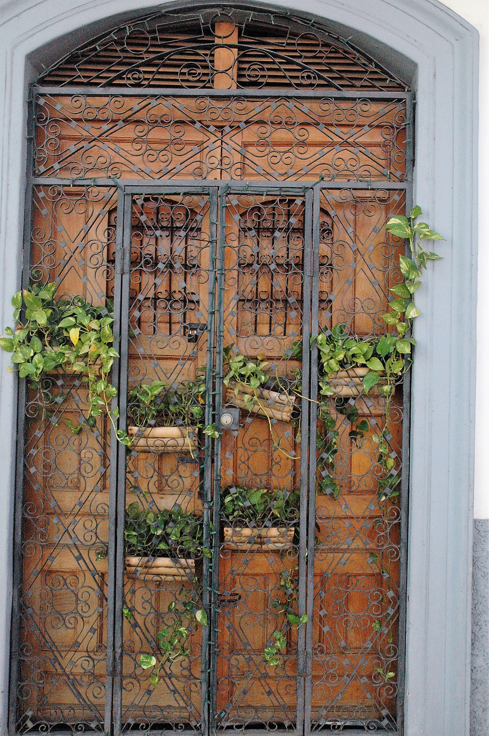 Many different colonial doors