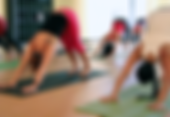 yinusa_yoga.png