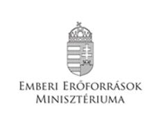 EMMI logo.png