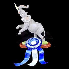 Elephant-Larry-Nix-BestofShow.jpg