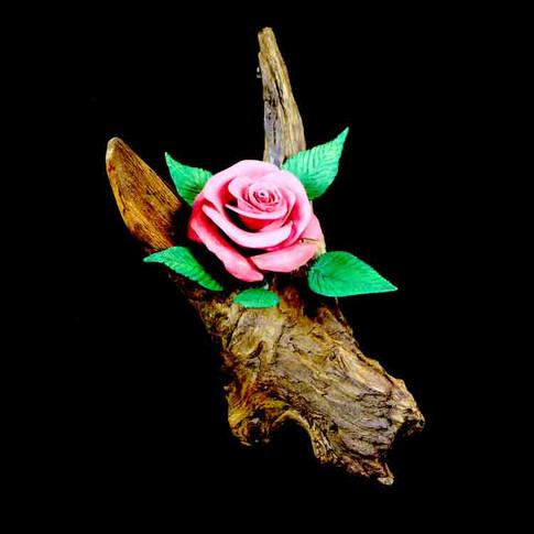 Rose by John Keydash