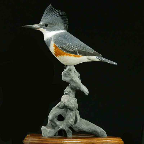 Kingfisher by Riley Monroe