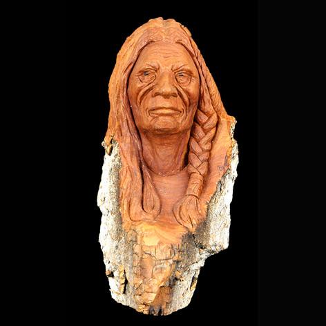 Indian Warrior by Bob Zenoble