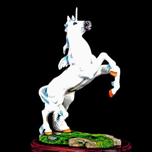 Unicorn by Larry Nix