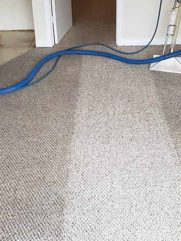 Perry's Elite Services - Carpet and Upholstery Cleaning