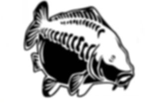 Specialisd Angling Logo
