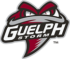 770-7707868_guelph-storm.png
