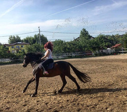 Instructor pe cal in pensiune