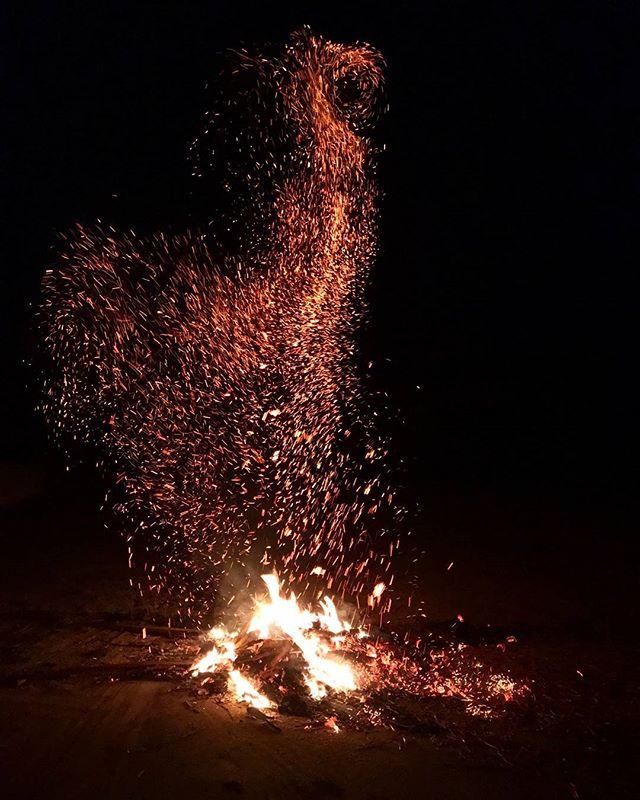 Foc de tabara echitatie